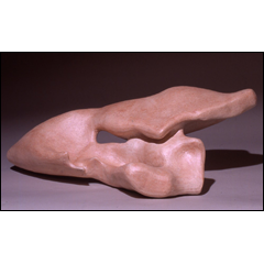 Beneath The Skin - 10x30 inches, 1999 - Terracotta